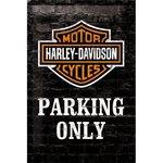 Harley Davidson 20x30 3D NA22231