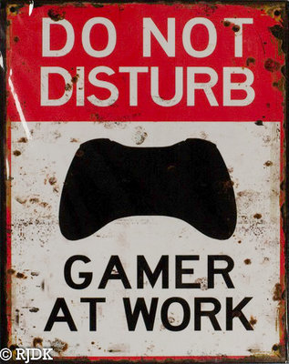 Do not disturb Gamer at work 25x20