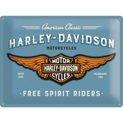 Harley Davidson Logo Blue 30x40 3D