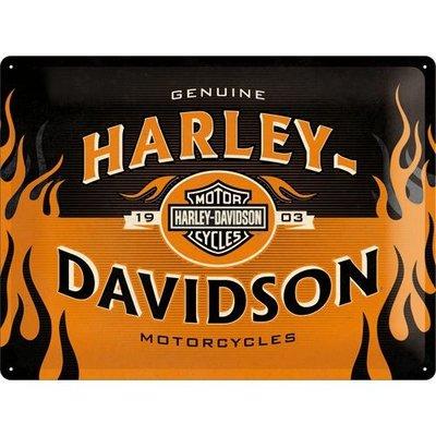 Harley Davidson 1903 Logo 30x40 3D