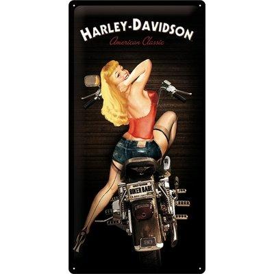 Harley Davidson Babe 25x50 3D