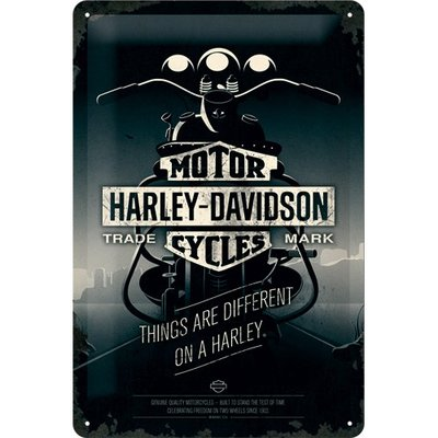 Harley Davidson Things Are Different 20x30 3D