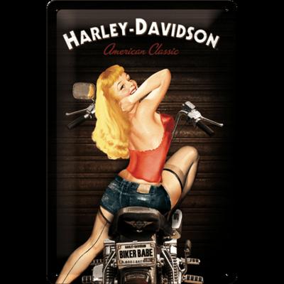 Harley Davidson Babe 20x30 3D