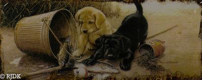 Twee hondjes 20x50