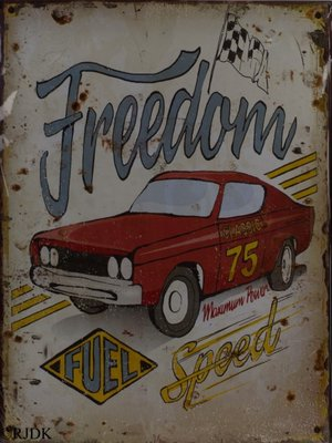 Freedom and Speed 33x25