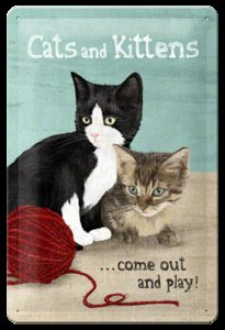 Postcard Cats and kittens come out and play 10x15CM
