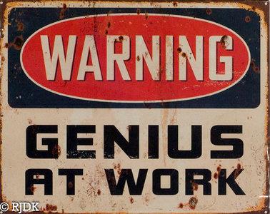 Warning Genius at work 25x20